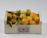 Mixta Naranjas - Clementinas - Limones 10 Kg