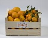 Mixta Naranjas - Clementinas 15 Kg