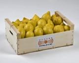 Limones 10 Kg