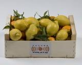Mixta Limones - Clementinas 10 Kg