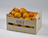Naranjas 10 kg